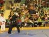 rns-mulhouse-2011-arts-martiaux-168