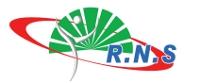 Logo RNS 2019